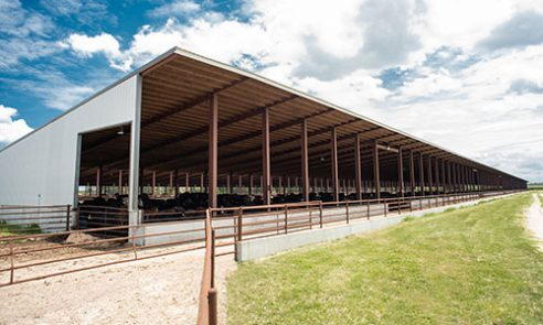 Our-Farm-State-of-the-Art-Facility